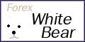 Forex White Bear